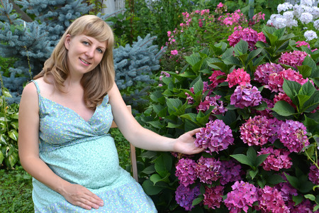 The young pregnant woman sits in a garden near a bush of the blossoming hydrangea
