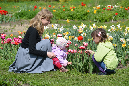 The young woman with two children admire tulips in a garden
