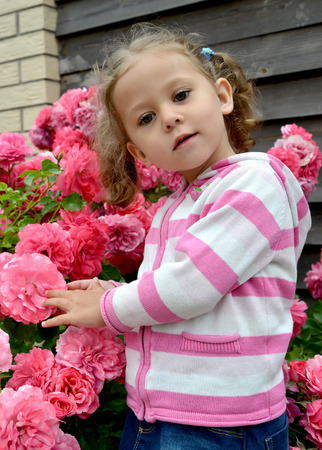 The three-year-old girl against the background of a bush of the blossoming roses