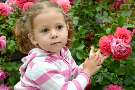 Portrait of the little thoughtful girl with roses Stock Photo