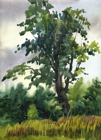 Picture Lonely Tree in Cloudy Day. Paper, watercolor