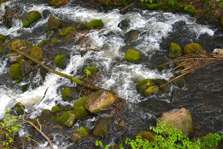 The raging water in the river Blue. Kaliningrad region