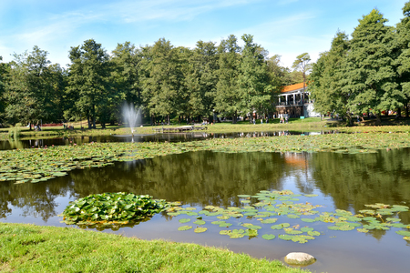 Pond in the city park in the summer afternoon. Zelenogradsk, Kaliningrad region Imagens