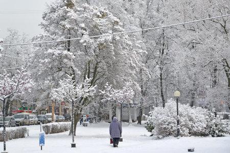 Winter city landscape. Kaliningrad, Festivalnaya Avenue Street