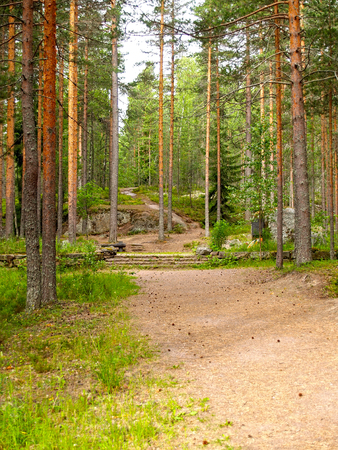 The remains of strengthenings of the line of Mannerheim in the natural boundary Pitkyakangas. Karelia