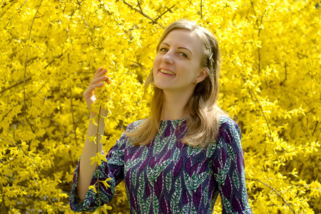 Portrait of the happy young woman against the background of the blossoming  forsythia Stock Photo