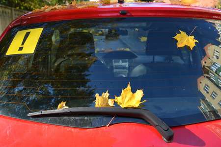 Yellow maple leaves and sticker with the exclamation mark on rear screen of the car