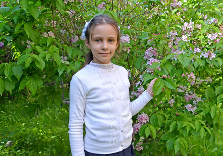 The first grader's portrait against the background of the blossoming veygela in the park