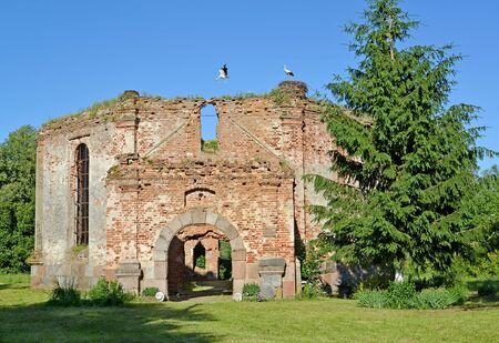 Ruins of Lutheran church Lyappinen's Alto (1703) in summer day. Settlement Big Banks, Kaliningrad region