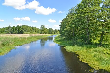The bed of the river Meadow in summer sunny day. Kaliningrad region Banco de Imagens