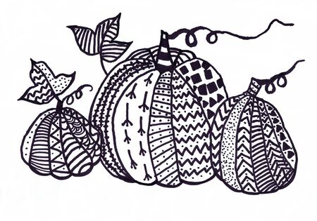 Three pumpkin on a white background. Children s drawing, graphics