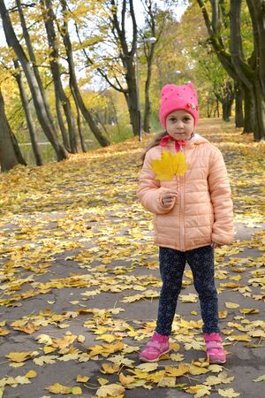 Little girl stands on autumn park alley with maple leaf in her hand