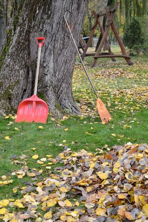 Shovel and loot to clean the fallen foliage in the park. Fall Stok Fotoğraf