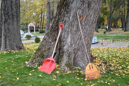 Shovel and loot to clean the fallen foliage in the park. Fall