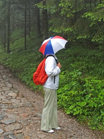 A woman tourist with an umbrella on her head will look into the woods on a rocky path. Tatra mountains, Poland