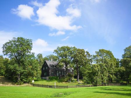 Dream house, british style mansion photo