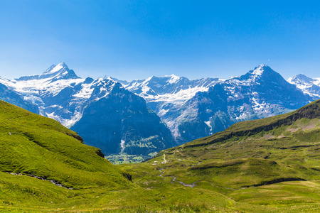 eiger: Panorama view of Schreckhorn, Fiescherwand, Eiger, the famous swiss alps near Grindelwald, Switzerland