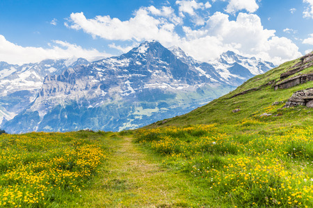 hiking path: View of the famous Eiger north face on the hiking path, on the bernese oberland in Switzerland