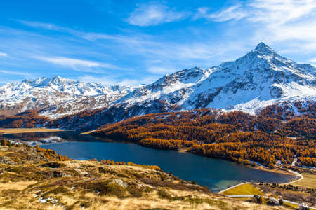 Stunning view of Sils lake and the swiss alps including the peak of Da La Margna in Upper Engadine with golden trees in autumn, Canton of Grisons, Switzerland. Stock fotó