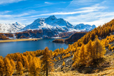 Stunning view of Sils lake and the Piz da la Margna swiss alps in Upper Engadine with golden trees in autumn, Canton of Grisons, Switzerland. Stock fotó