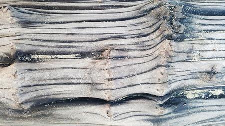 driftwood: Driftwood Texture Stock Photo
