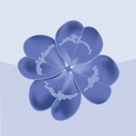 four leaf: Tr?l de cuatro hojas Vectores