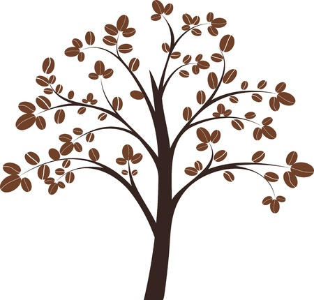 coffee beans isolated: Coffee tree on white background illustration