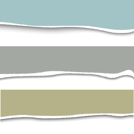 cut or torn paper: Vector torn paper. Set of three banner torn paper for ypur design with space for text Illustration
