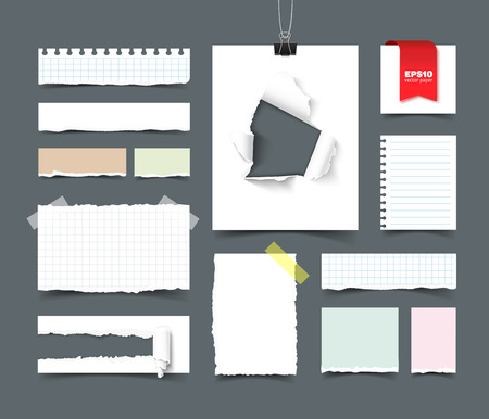 Set of various paper sheets and pieces. Sqared and lined notepaper, paper with hole and paper roll, torn paper with ripped edges, ragged pages, scotch tape, paper clip. Realistic vector template for branding. Paper pieces isolated on dark background Illustration