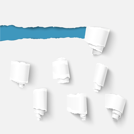 tear off: Collection of torn paper rolls. Realistic vector torn damaged paper with ripped edges. Torn paper template. Paper roll template. Illustration