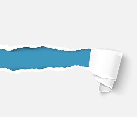 curled edges: White torn paper with a paper roll over blue background with space for text. Realistic vector torn damaged paper with ripped edges. Torn paper template. Illustration