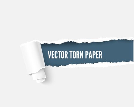 teared: Torn paper with scroll and space for your message, realistic vector illustration. Torn paper with teared edges