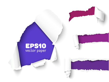 curled edges: Realistic vector torn paper with ripped edges. Torn page banner for web and print. Damaged torn paper for design.