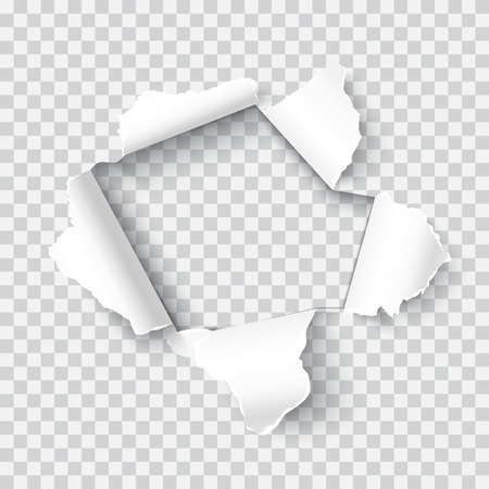 Torn paper realistic vector illustration