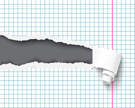 Torn notebook paper pieces realistic vector illustration. Back to school concept