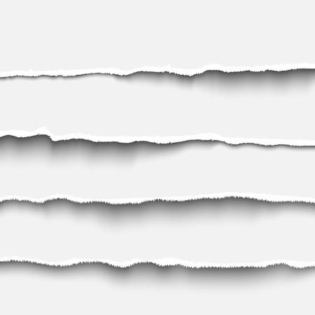 Striscia di carta strappata impostata illustrazione vettoriale realistica bordi di carta a strappo per banner, intestazione, divisore e design di stampa. Modello di carta a strappo bianco