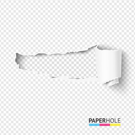 Vector blank curled tear paper piece into a scroll with torn edges of hole and shadows on a transparent background for sale promo empty banner revealing some message.