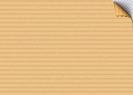 Cardboard corrugated sheet with curled corner realistic vector background
