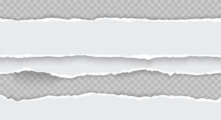 Horizontal torn paper edge pieces. Paper realistic vector texture. Rough broken border of paper stripe isolated on transparent background