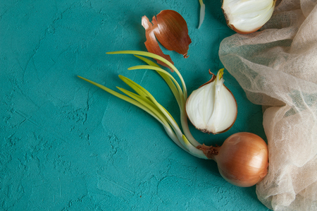 Sprouted onions on turquoise textured background. Texture of concrete Stock Photo