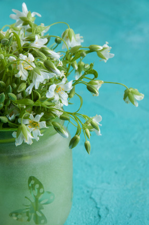 White wild flowers in a green jug close up on turquoise textured background