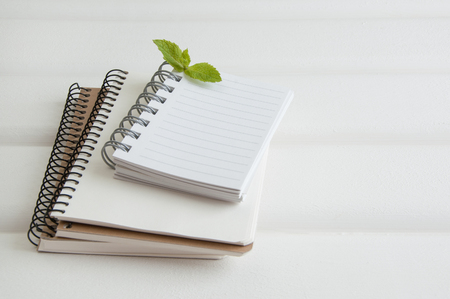white sheet: Notebooks and sprig of mint on white wooden background