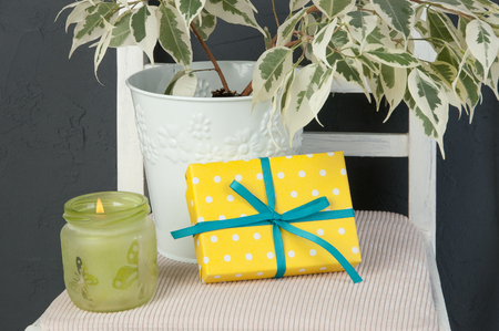Yellow white polka dot gift box with a bow , candlestick and ficus benjamin on chair on dark gray textured background.Texture of concrete
