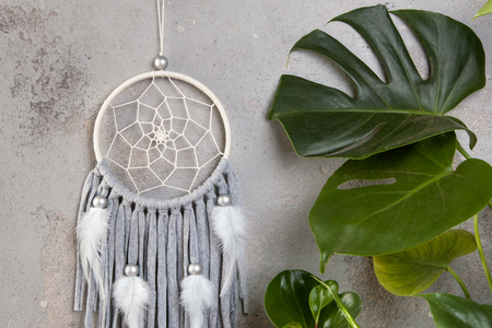 Gray beige dream catcher in interior on gray textured background. Green plants and copy space for text. Banque d'images