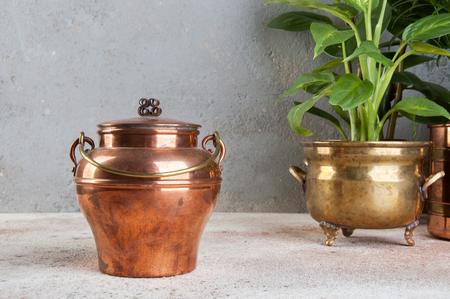 Vintage copper can and green plants in brass and copper vintage flower pots on a concrete background. Copy space for text.