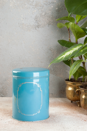 Old vintage blue tin canister and green plants in brass flower pots on concrete background. Copy space for text.