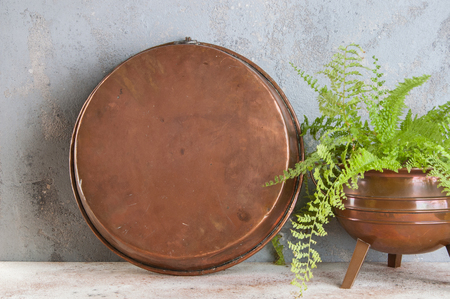 Vintage copper mold and green plant on a concrete background. Copy space for text. Stock Photo