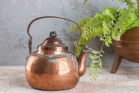 Antique copper kettle and green plant in copper flower pot on concrete background. Copy space for text. Archivio Fotografico