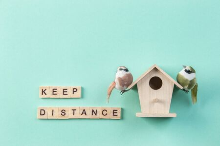 Words keep distance in wood letters and two birds on birdhouse on mint background. Copy space for text.