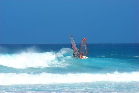 watersport: Windsurfer in Fuerteventura
